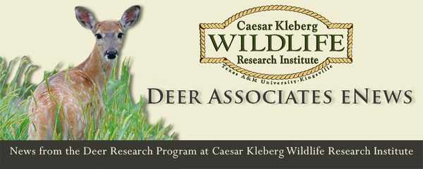 Deer Associates Header 2013 2